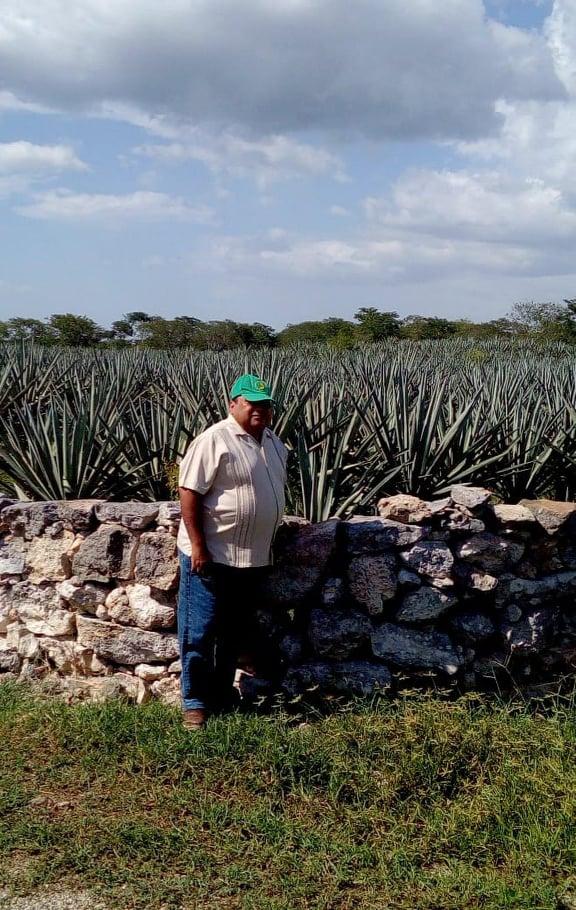 Campo yucateco: panorama de miseria