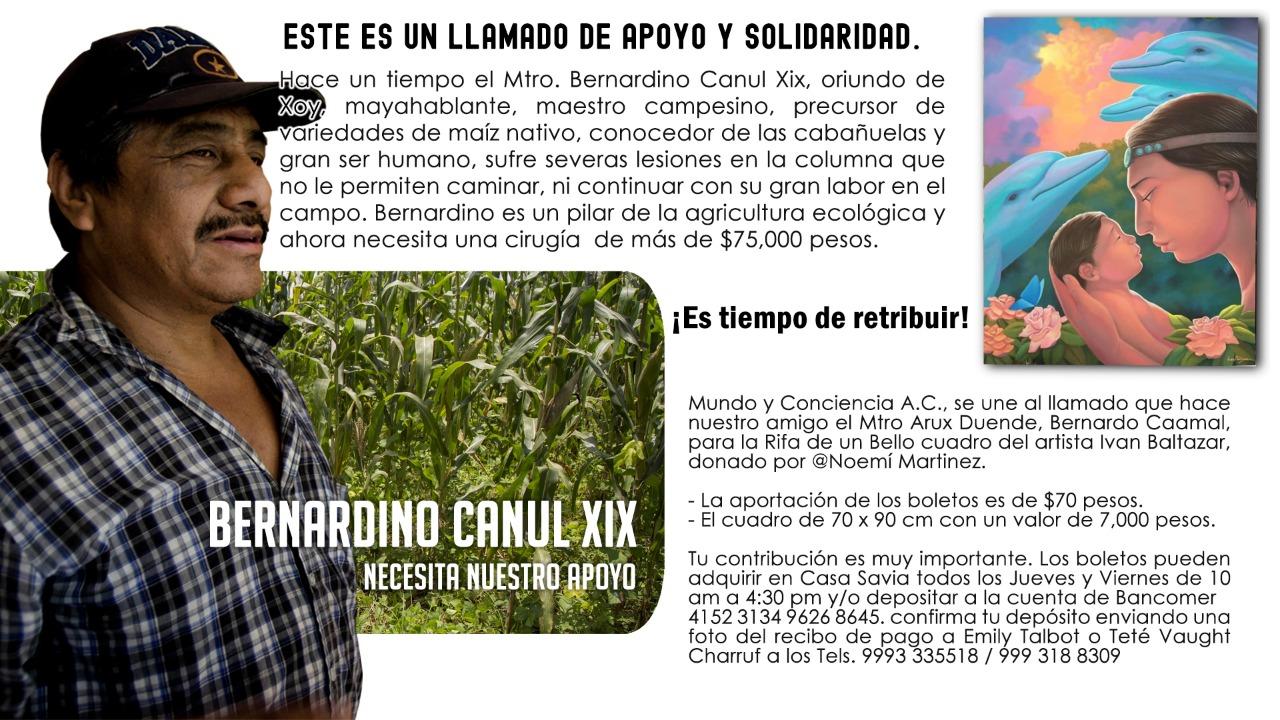 Apoyo-a-campesino-maya.jpeg
