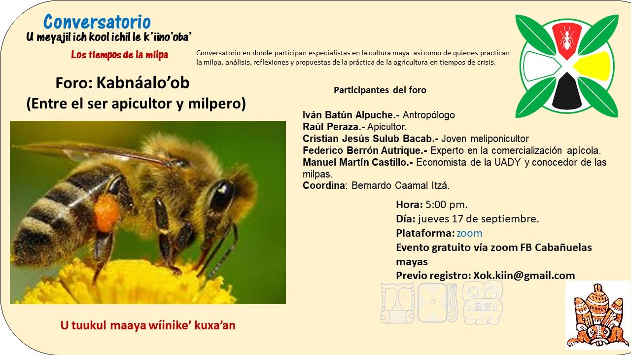 cartel-de-las-abejas.jpg