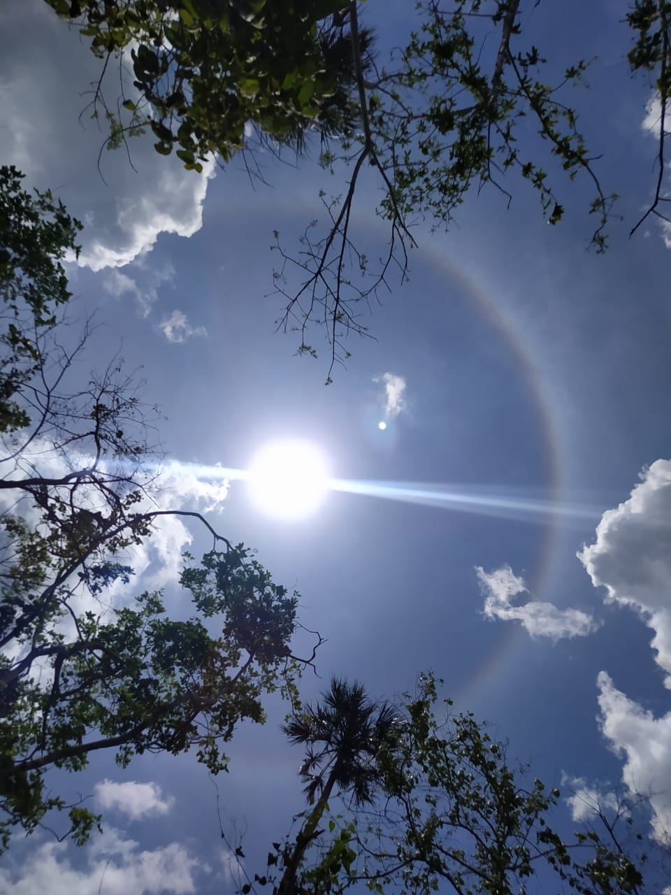 Imagen-desde-colonia-Yucatan-de-Angel-Fernando-Castillo-Cime.jpg